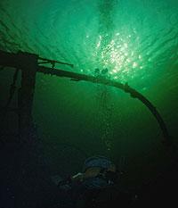 bilder under vann